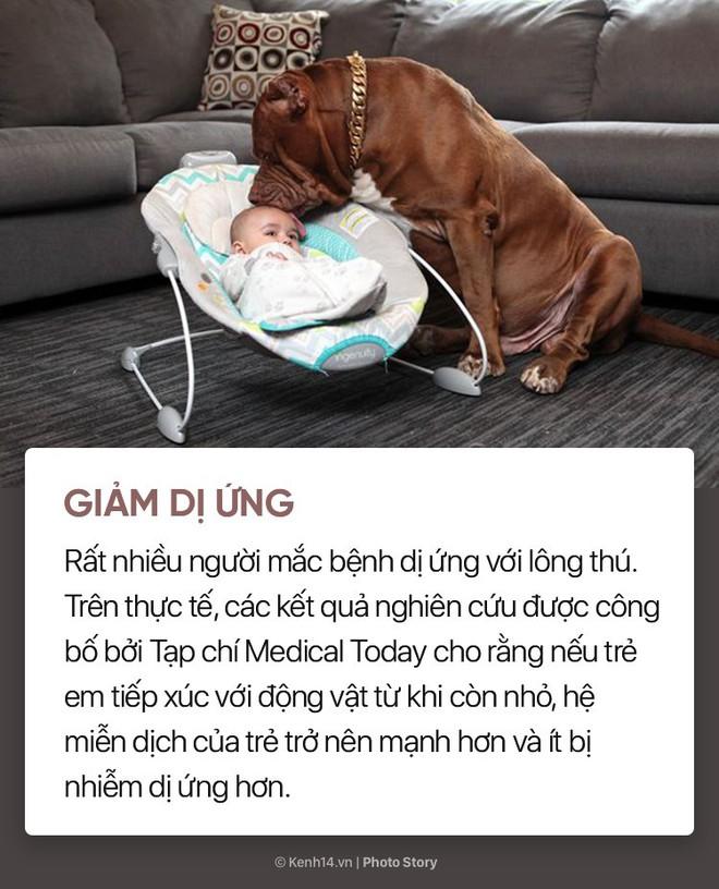 Nuôi cún cưng không chỉ giúp bạn vui vẻ mà còn chống lại rất nhiều bệnh tật - Ảnh 5.