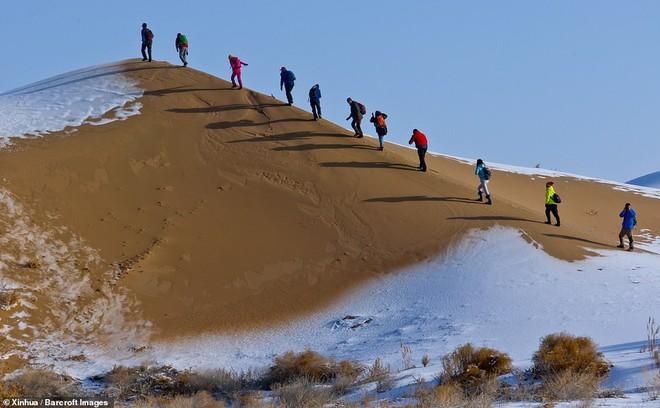 Nhiệt độ xuống -25 độ C, sa mạc ở Trung Quốc phủ đầy tuyết trắng - ảnh 3