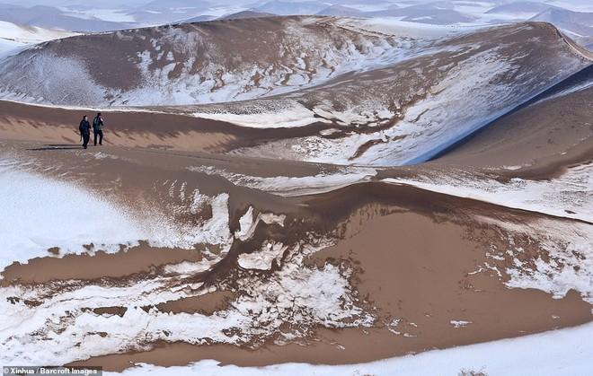 Nhiệt độ xuống -25 độ C, sa mạc ở Trung Quốc phủ đầy tuyết trắng - ảnh 4