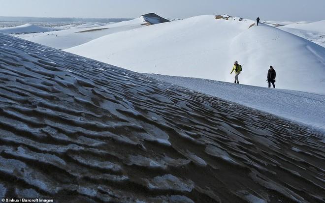 Nhiệt độ xuống -25 độ C, sa mạc ở Trung Quốc phủ đầy tuyết trắng - ảnh 6
