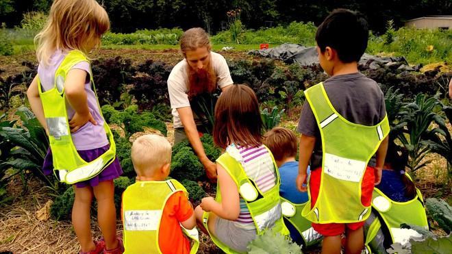 Đây chính là lý do khiến New Zealand trở thành quốc gia có nền giáo dục thân thiện với môi trường nhất thế giới - Ảnh 2.