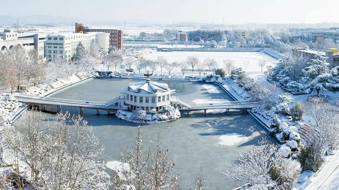 Hàn Quốc cũng đang lạnh khủng khiếp: Ống nước đóng băng, máy giặt đông đá - Ảnh 10.