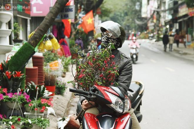 Đào tiến vua đại náo thị trường hoa Tết, giá bán lên tới hàng chục, hàng trăm triệu đồng - ảnh 2