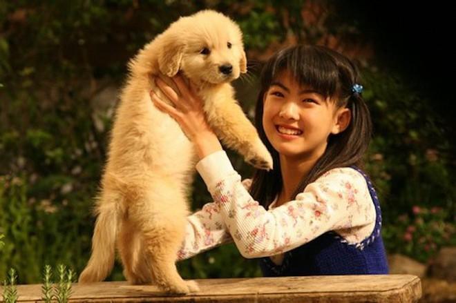 Năm Mậu Tuất và 5 câu chuyện cảm động về loài chó của điện ảnh Nhật Bản - ảnh 7