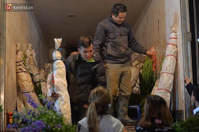 Chùm ảnh: Tấp nập chợ hoa Quảng An đêm trước giao thừa - ảnh 6