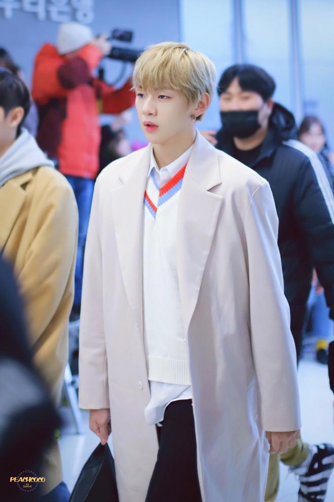 SHINee và Wanna One đụng độ tại sân bay: Center quốc dân có đọ được với độ sang chảnh của Key và Taemin? - Ảnh 5.