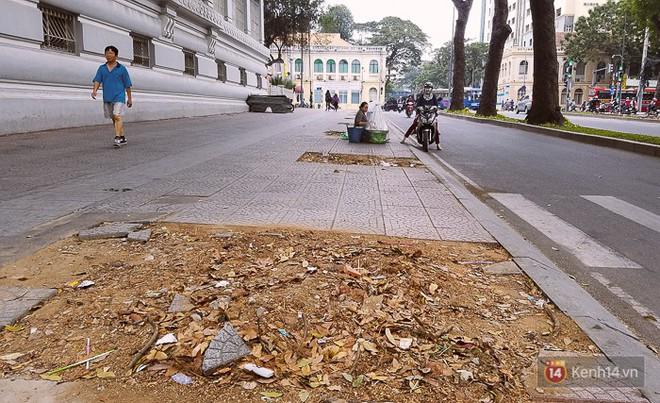 Chùm ảnh: Người Sài Gòn đặt hoa hồng trên gốc những hàng cây xanh bị đốn hạ ở đuờng Tôn Đức Thắng - ảnh 14