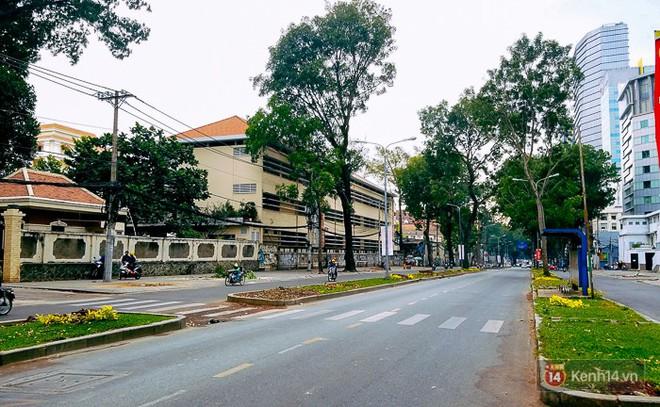 Chùm ảnh: Người Sài Gòn đặt hoa hồng trên gốc những hàng cây xanh bị đốn hạ ở đuờng Tôn Đức Thắng - ảnh 8