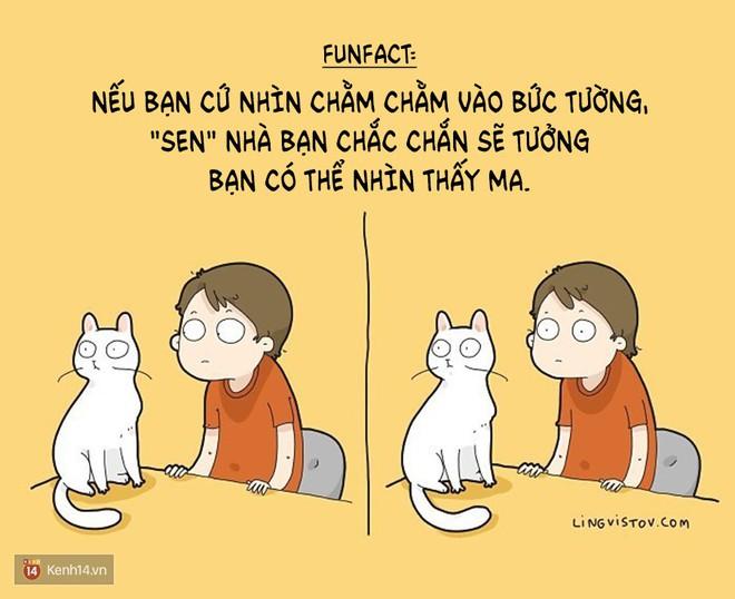 Có thể bạn thừa biết: Mèo giống như con gái vậy, đáng yêu nhưng khó ưa cực kì! - ảnh 10