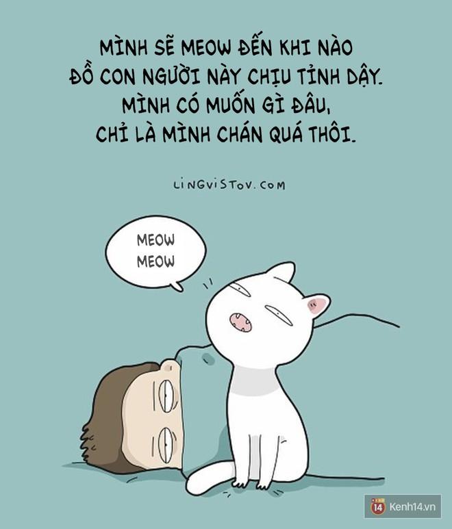 Có thể bạn thừa biết: Mèo giống như con gái vậy, đáng yêu nhưng khó ưa cực kì! - ảnh 11