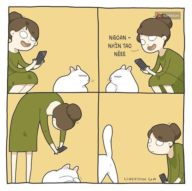 Có thể bạn thừa biết: Mèo giống như con gái vậy, đáng yêu nhưng khó ưa cực kì! - ảnh 14