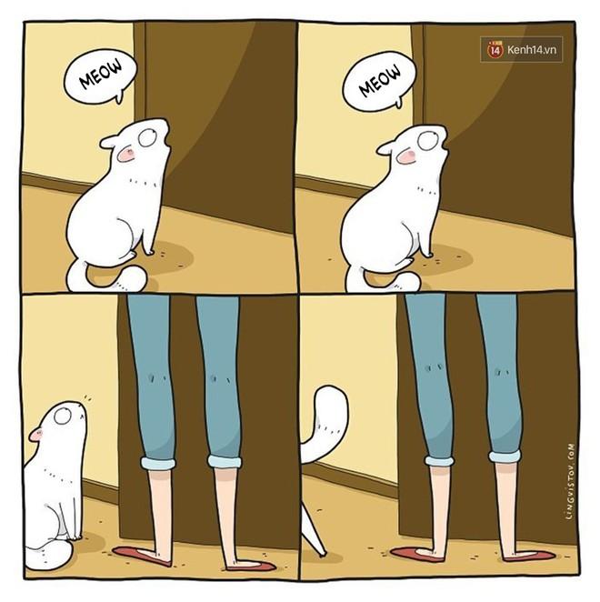 Có thể bạn thừa biết: Mèo giống như con gái vậy, đáng yêu nhưng khó ưa cực kì! - ảnh 15
