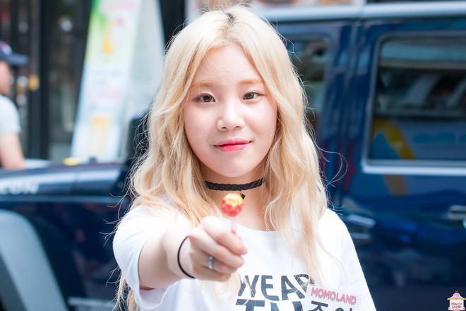Yoona và Irene là nữ thần đình đám, nhưng cũng không hot bằng 2 mỹ nhân mới nổi lên này của làng giải trí Hàn - Ảnh 10.