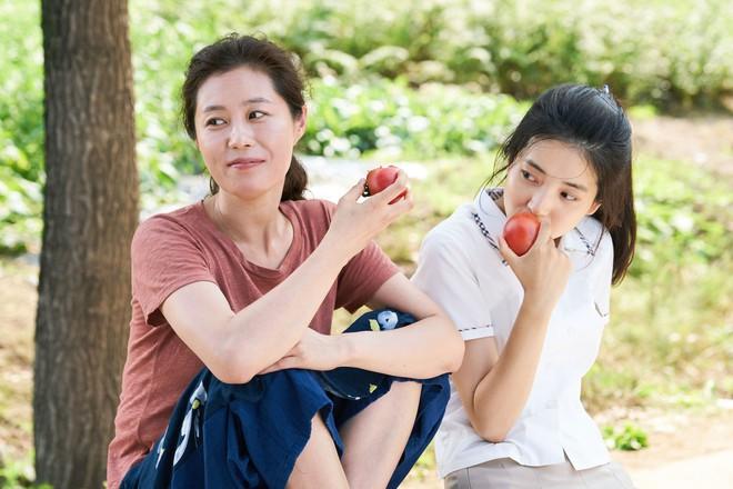 Cùng nàng thơ Kim Tae Ri trốn chạy khỏi phố thị ồn ã trong Little Forest - Ảnh 4.