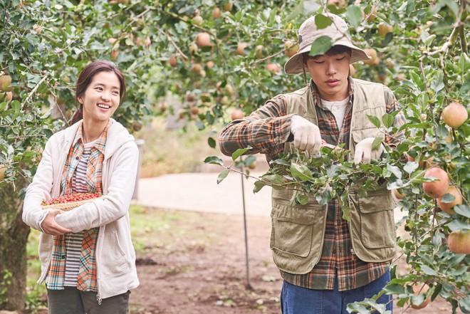 Cùng nàng thơ Kim Tae Ri trốn chạy khỏi phố thị ồn ã trong Little Forest - Ảnh 7.