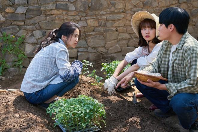Cùng nàng thơ Kim Tae Ri trốn chạy khỏi phố thị ồn ã trong Little Forest - Ảnh 3.