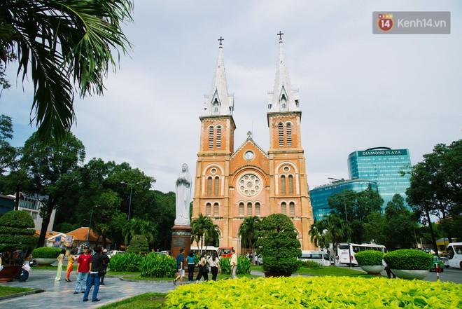 Vì sao Sài Gòn có rất nhiều chợ mang tên cây cỏ kỳ lạ? - Ảnh 1.