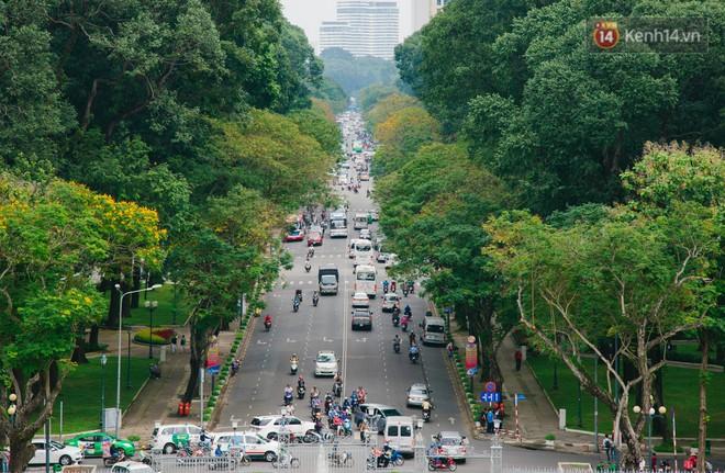 Vì sao Sài Gòn có rất nhiều chợ mang tên cây cỏ kỳ lạ? - Ảnh 2.