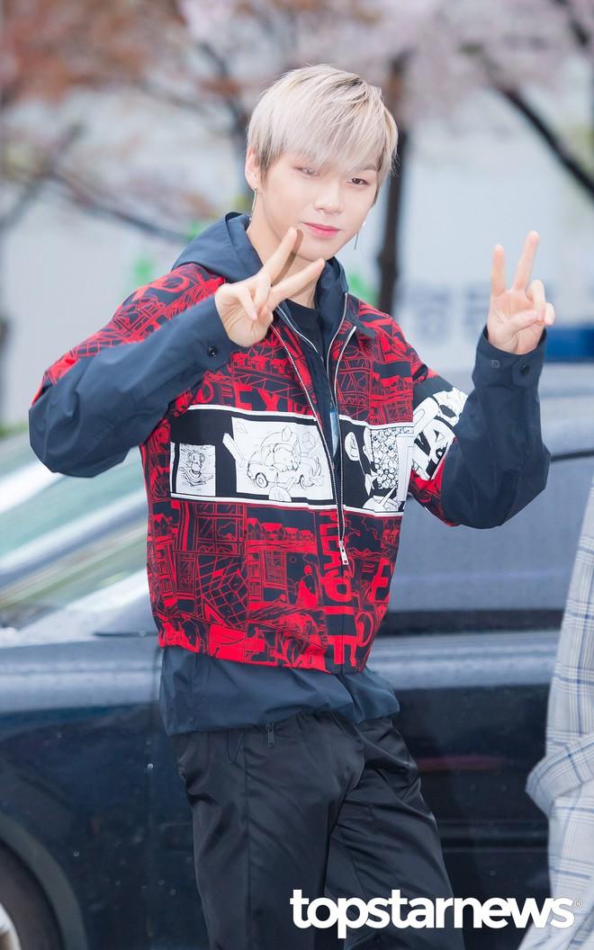 Tiên cảnh hoa anh đào tại Hàn: Mỹ nhân Hani chiếm hết spotlight, Wanna One xuất hiện cùng quân đoàn mỹ nam - Ảnh 11.
