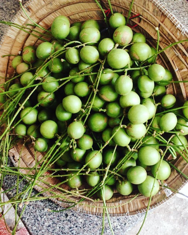 Điểm mặt những loại trái cây chua khiến hội ghiền ăn vặt phát cuồng ở Sài Gòn - Ảnh 8.