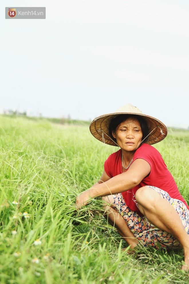 Người mẹ nghèo sinh 14 đứa con ở Hà Nội: Cố gắng tích góp để lỡ nằm xuống còn có cỗ quan tài, chứ chẳng phiền các con - ảnh 5