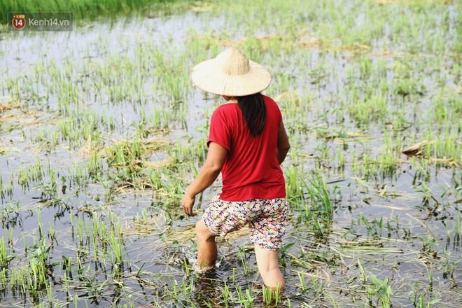 Người mẹ nghèo sinh 14 đứa con ở Hà Nội: Cố gắng tích góp để lỡ nằm xuống còn có cỗ quan tài, chứ chẳng phiền các con - ảnh 3