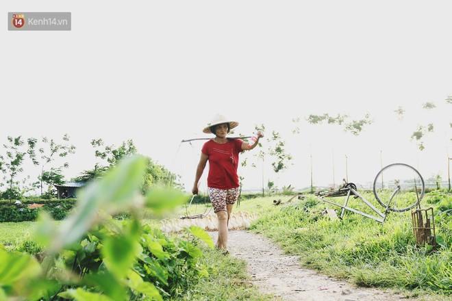Người mẹ nghèo sinh 14 đứa con ở Hà Nội: Cố gắng tích góp để lỡ nằm xuống còn có cỗ quan tài, chứ chẳng phiền các con - ảnh 2