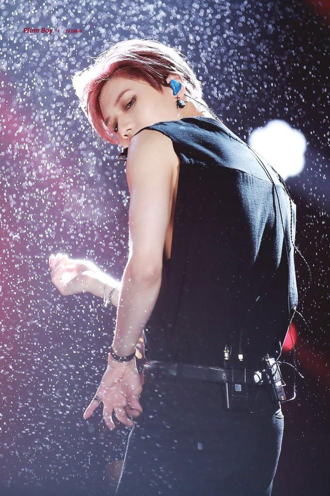 Taemin (SHINee) biểu diễn dưới mưa tại Dream Concert: Đẹp như một bức tranh! - Ảnh 3.