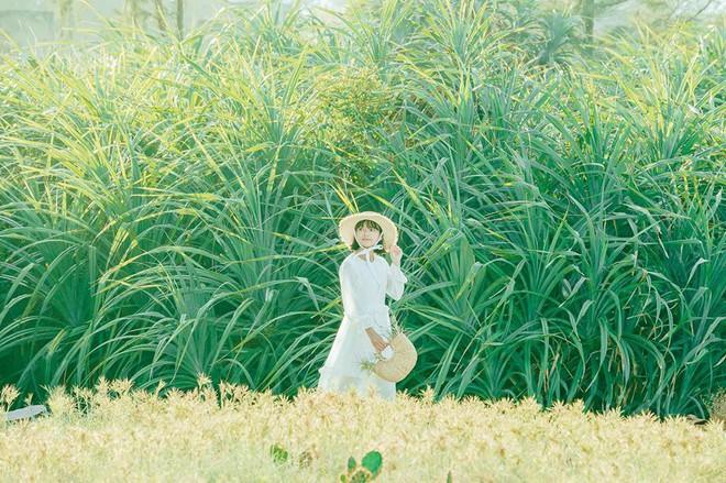 Nhờ bộ ảnh này mà chúng ta biết được một chốn chụp ảnh sống ảo cực mới ở Đà Nẵng - Hội An - ảnh 15