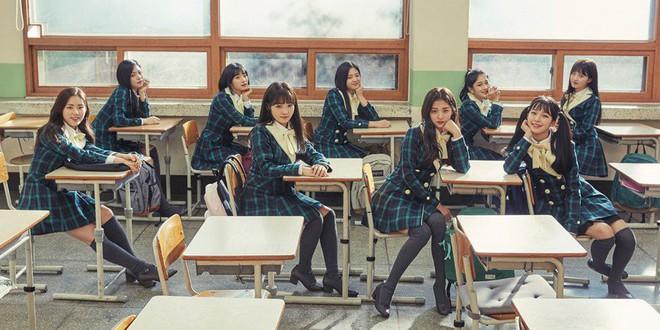 """21 idol group ra đời từ show sống còn: Nhóm thành """"ông hoàng bà chúa"""" quốc dân, nhóm tranh tài nảy lửa nhưng vẫn chịu kiếp vô danh - Ảnh 11."""