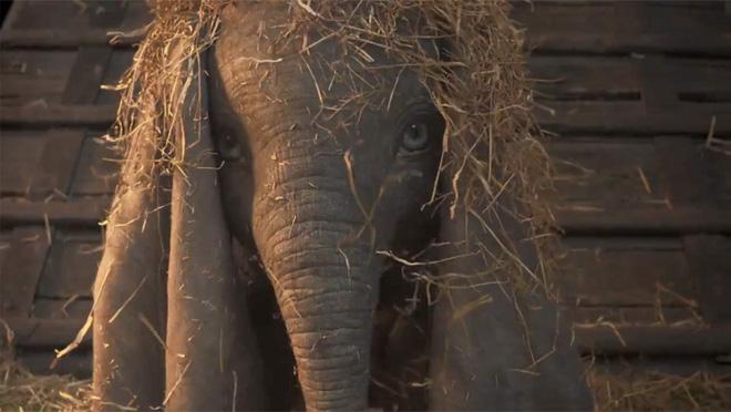 Voi con biết bay Dumbo bất ngờ quay trở lại với phiên bản live-action đẹp nhức nhối - ảnh 3