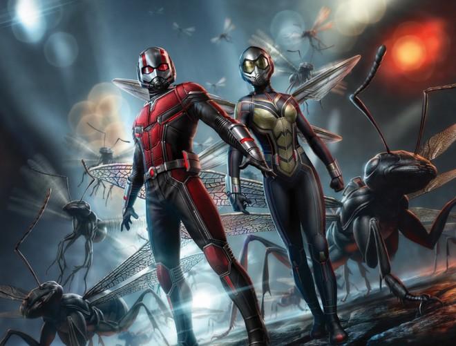 Nếu Avengers 4 mà thiếu anh chị ong kiến Ant-Man and the Wasp thì không xong đâu! - ảnh 4