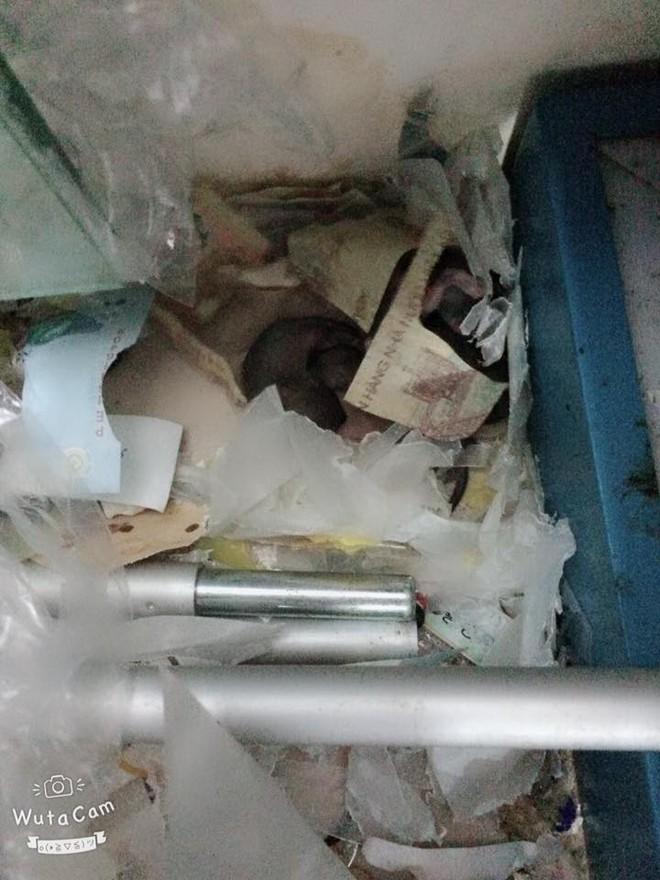 Góc thất thu: Cả cửa hàng lục đục vì liên tục mất tiền, cuối cùng phát hiện ra do chuột tha hết về lót ổ - Ảnh 1.