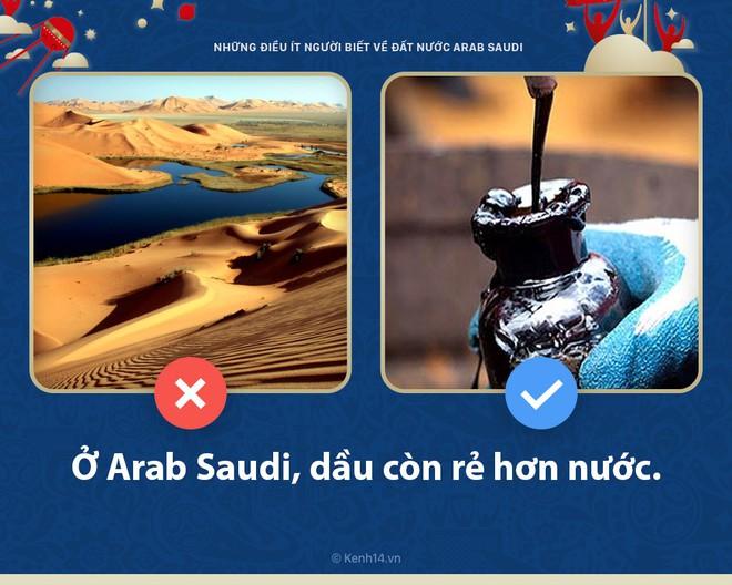 5 điều bất ngờ ít người biết về Arab Saudi - đất nước sẽ đối đầu với nước Nga chủ nhà World Cup hôm nay - ảnh 2