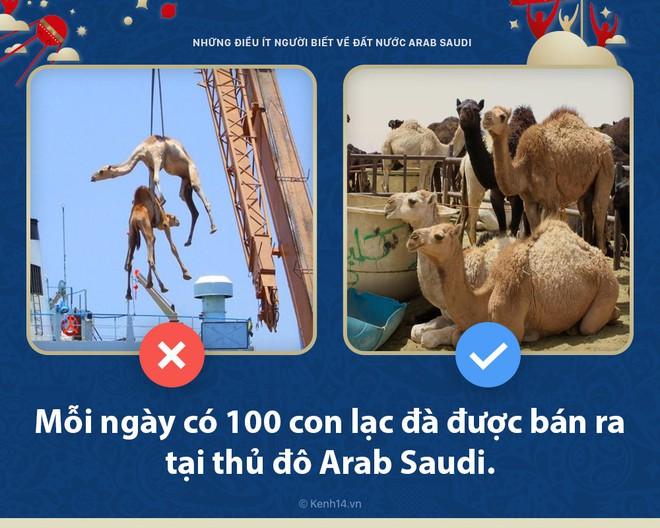 5 điều bất ngờ ít người biết về Arab Saudi - đất nước sẽ đối đầu với nước Nga chủ nhà World Cup hôm nay - ảnh 3