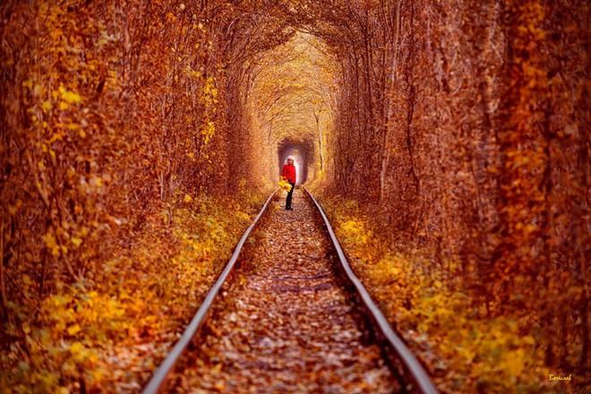 """Ghé thăm """"đường hầm tình yêu"""" đẹp ma mị ở Ukraine, nơi những cặp đôi một lần lạc bước sẽ chẳng muốn quay về - ảnh 8"""