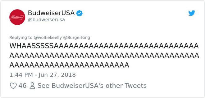Burger King hò hét cãi nhau loạn xì với Budweiser trên mạng xã hội, cư dân mạng ngớ người khi biết sự thật - Ảnh 42.