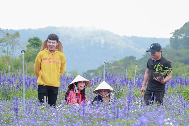Hòa Minzy - Duy Khánh la hét om sòm khi chơi trò cảm giác mạnh tại Đà Lạt - Ảnh 3.