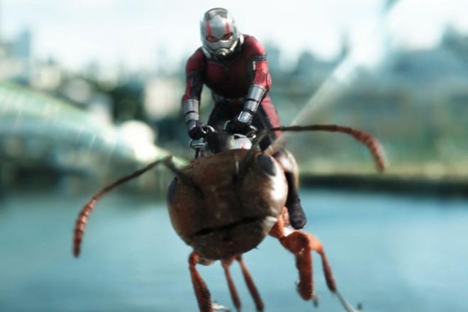 Suýt hóc vì 8 hạt sạn khó chịu trong Ant-Man and the Wasp - ảnh 5