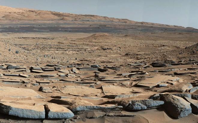 Báo cáo hết sức đắng: Có thể NASA đã phá hủy bằng chứng hiếm hoi về sự sống trên sao Hỏa - ảnh 2