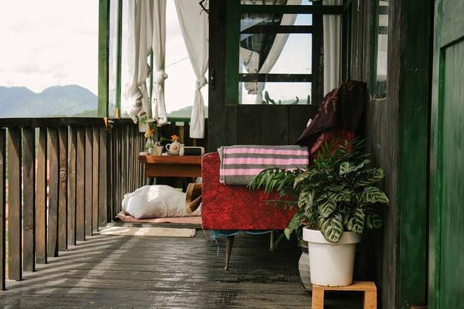 3 homestay ở Đà Lạt để bạn ểnh ương ngủ nướng rồi đọc sách, uống trà cả ngày không chán - Ảnh 2.