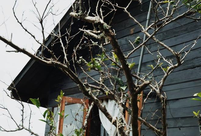 3 homestay ở Đà Lạt để bạn ểnh ương ngủ nướng rồi đọc sách, uống trà cả ngày không chán - Ảnh 4.