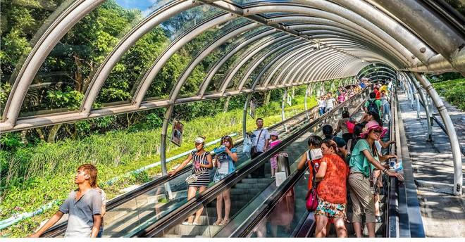 Những hệ thống giao thông công cộng kỳ lạ nhất thế giới: Tàu chạy bằng sức người, thang cuốn dài 800 mét - Ảnh 6.