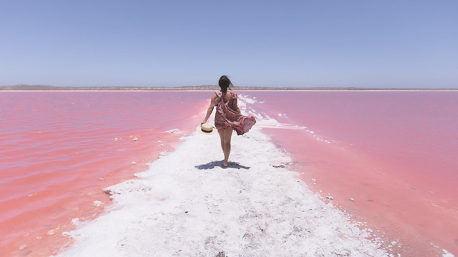 Hồ màu hồng lạ lùng giữa vùng đảo nước Úc: Điều gì tạo nên màu sắc thú vị này? - ảnh 5