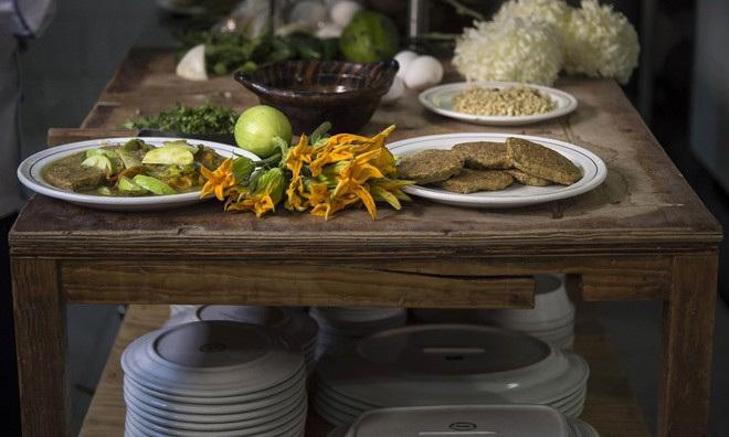 Trứng muỗi nấu với xương rồng, hoa cúc - món ăn khó tin nhưng lại vô cùng hấp dẫn với người Mexico - Ảnh 6.