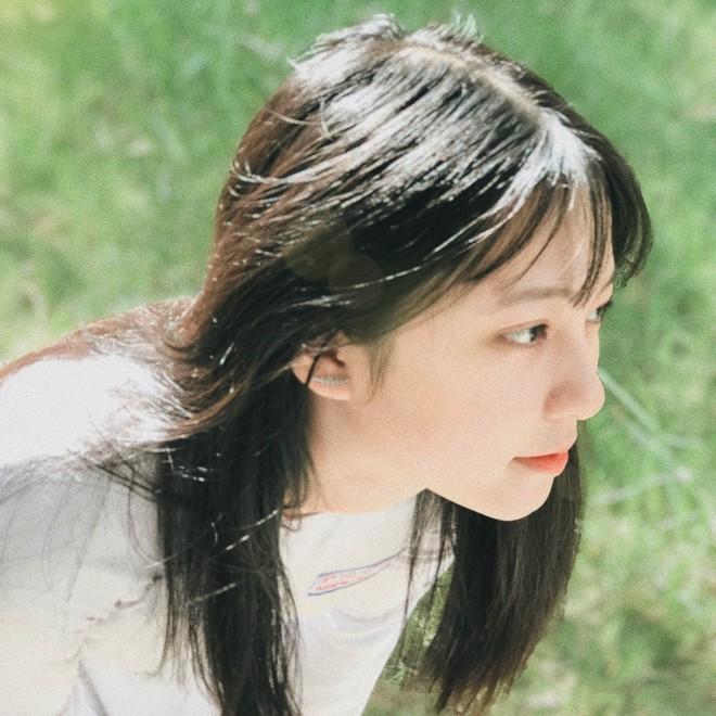 Chưa đến năm học mới, thiếu nữ Đà Nẵng đã gây sốt với bức ảnh diện áo dài xinh đẹp hơn nắng mai - ảnh 5