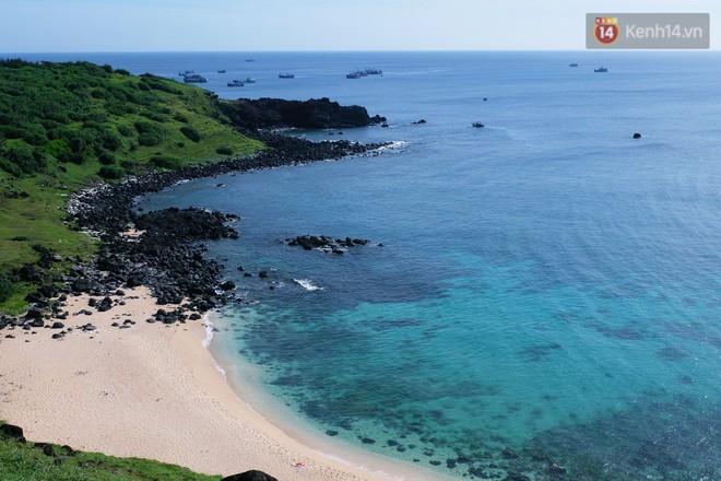 Here We Gau: Cùng Gấu khám phá đảo Phú Quý tuyệt đẹp và hoang sơ - ảnh 4