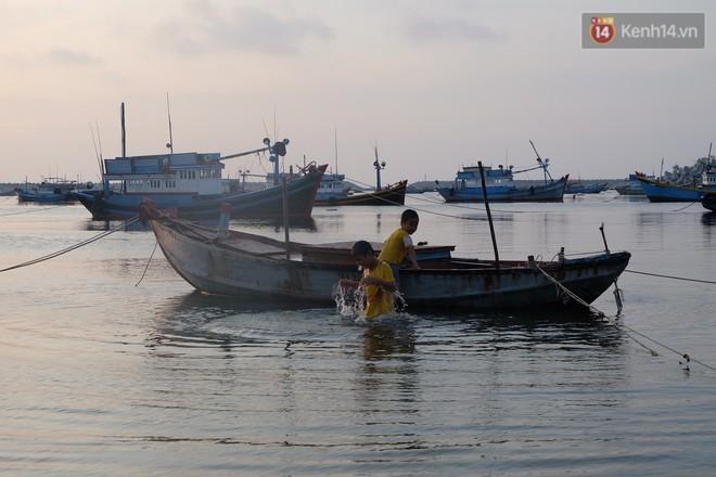 Here We Gau: Cùng Gấu khám phá đảo Phú Quý tuyệt đẹp và hoang sơ - ảnh 2