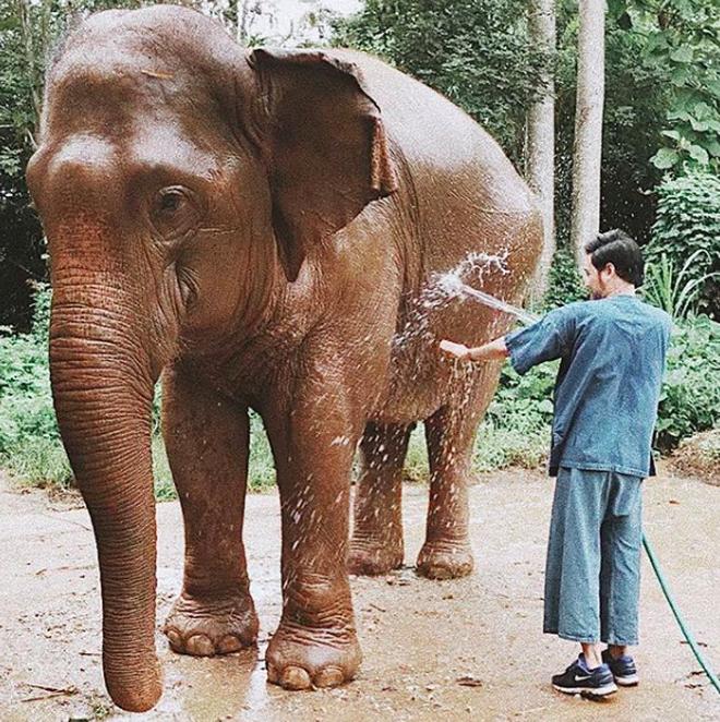 Quang Vinh: Hoàng tử sơn ca không chỉ hát hay mà còn có cả những chuyến đi khiến ai yêu du lịch cũng trầm trồ! - ảnh 2