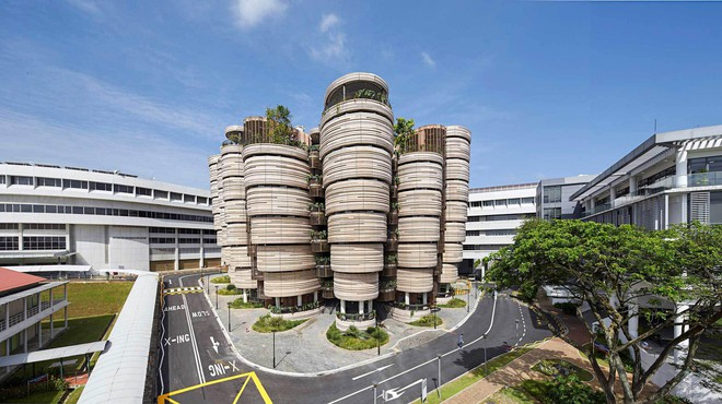 Bước đột phá của giáo dục Châu Á: Thêm 2 trường tại Trung Quốc và Singapore lọt top 100 đại học tốt nhất thế giới - ảnh 1